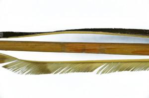 E1106-17