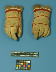 Thumb e1665 1